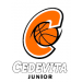 KK Cedevita Junior